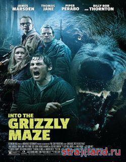 гризли into the grizzly maze 2013 смотреть фильм трейлер онлайн в hd 720